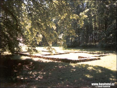 Trocnov – základy dvorce, který snad patřil Žižkovi