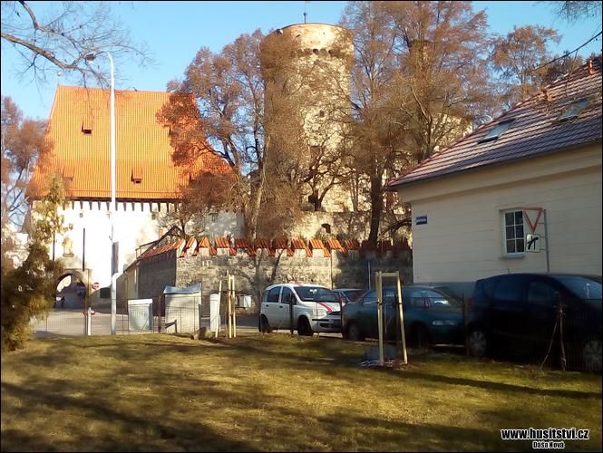 Tábor - lipky vysazené na počest Jana Husa (2015) a Jeronýma Pražského (2016) na zahradě Církve bratrské